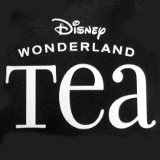 Disney Wonderland Logo