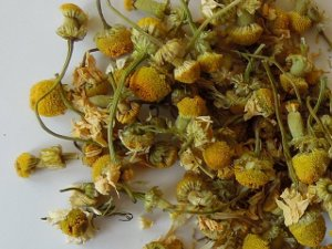 Loose-leaf, dried chamomile flowers