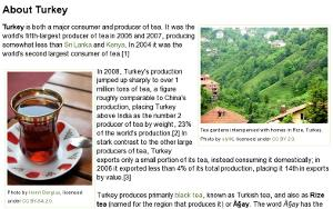Screenshot of the new article on Turkey