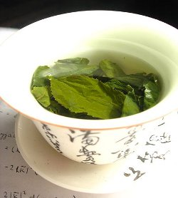 Whole green tea leaves steeping in water