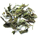 Picture of Nepal 1st Flush 2014 Spring Buds White Tea