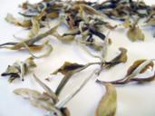 Picture of Mim White Tea