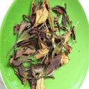 Picture of Sun Dried Loose Leaf White Tea