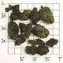 Large, Tightly-Curled Dark Green Tea Leaf against a grid background
