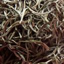 Picture of White Tea