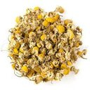Picture of Egyptian Camomile