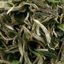 Picture of High Grade China White Tea