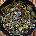Picture of Darjeeling White Tips