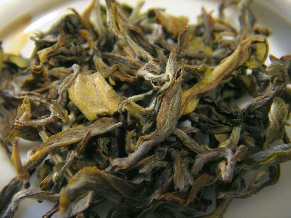 Curly, irregular, loose-leaf tea leaves with yellow to brown colors, covered in downy white hairs