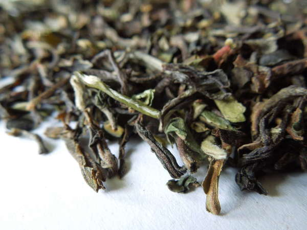 Loose-leaf tea with irregular, crinkly leaves, colors ranging from pale green through orange and olive to dark brown or black