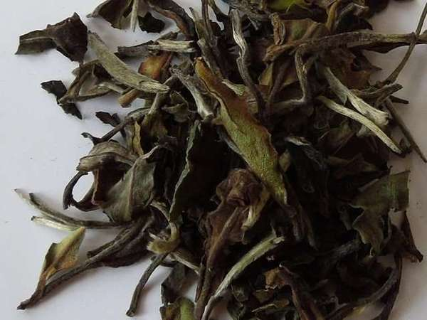 Loose-leaf tea with large olive green and brown leaves, and silver, downy tips