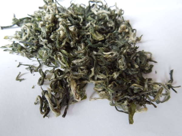 Loose-leaf green tea with silvery green leaves and very curly shape